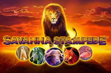 Savanna Stampede