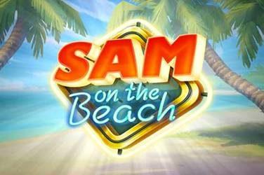 Sam On The Beach
